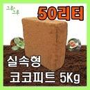 코코피트 분갈이흙 달팽이흙 블럭 톱밥 곤충 배양토