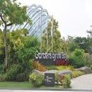 (마이스토리/자유TOP10) 내맘대로 싱가포르 3박5일 준특급+항공