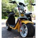 할리전동스쿠터전기자전거전동오토바이